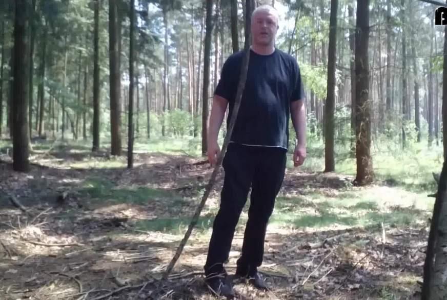 Der Wald - W*****r