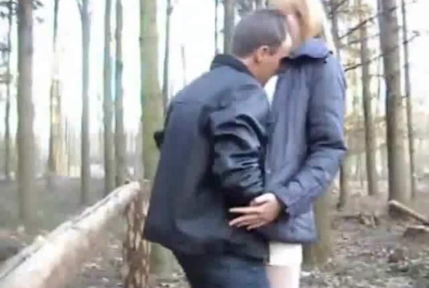 B*****b im Wald