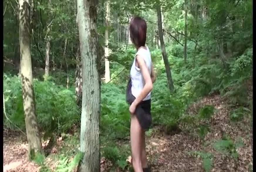 Baum angestrudelt!