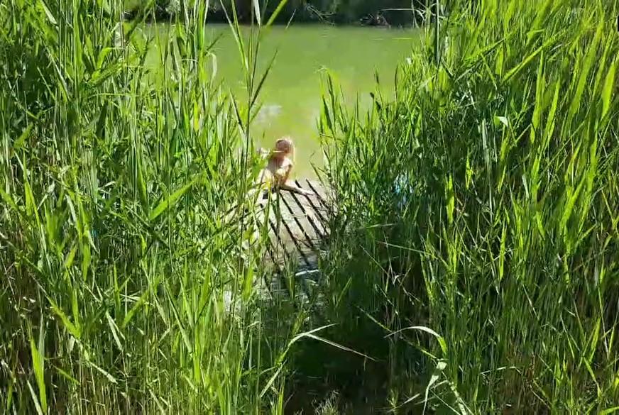 Selbst am Teich gemacht und beobachtet worden